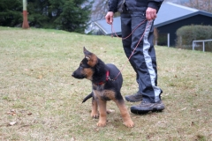 Training011